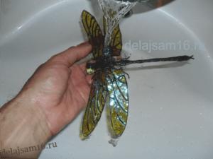 промываем стрекозу